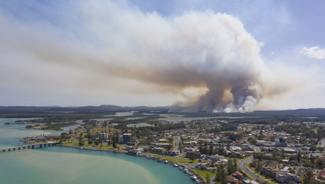 Accounting profession responds to bushfire crisis